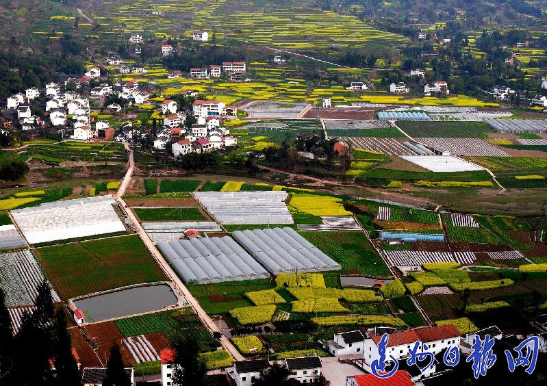 达川区:土地整治激活农村发展一池春水