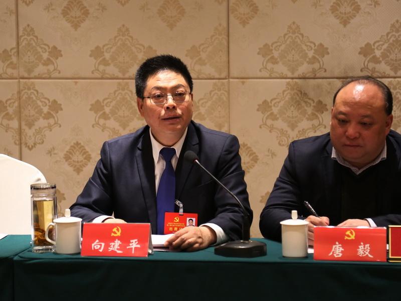 向建平參加機關二團、鄉(xiang)鎮二團分(fen)組討(tao)論