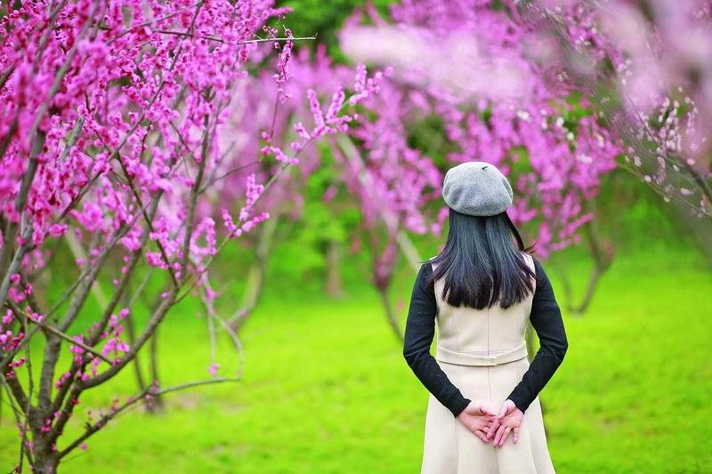 收藏!达州最全赏花地图,市民今春赏花踏青目的地选择更多啦!