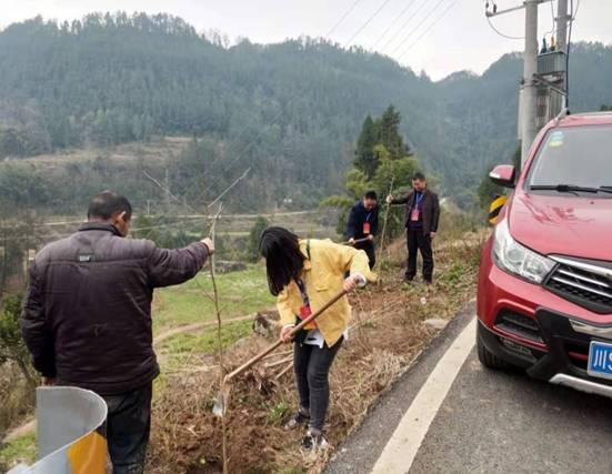宣汉东林乡积极展开春季植树造林运动