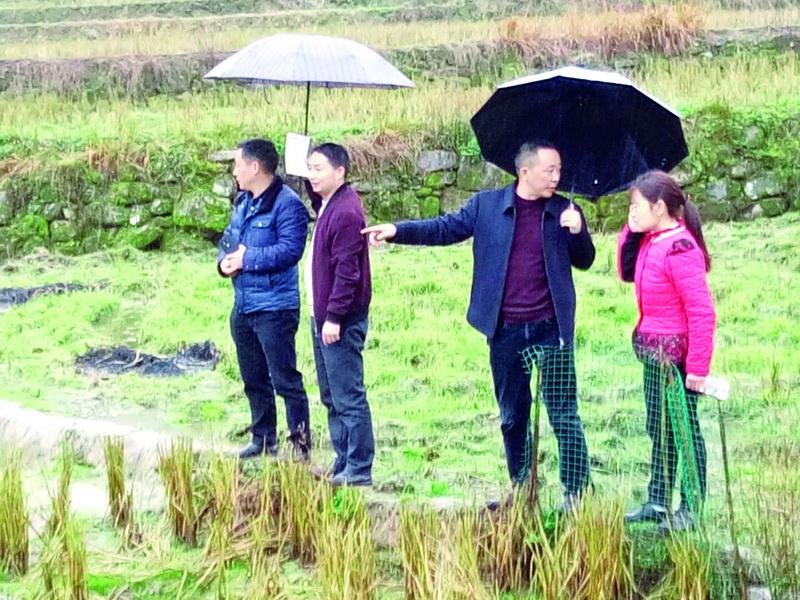 宣汉15岁女孩挖野菜接济苦难的家,众多网友希望为春霞家众筹9亩鱼塘