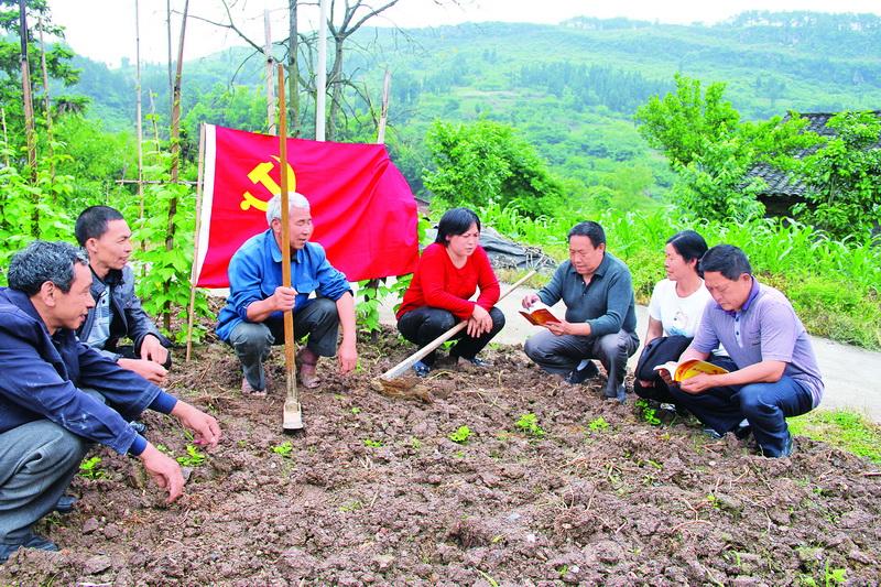 """一个个""""战斗堡垒""""在大竹县脱贫一线攻坚克难"""