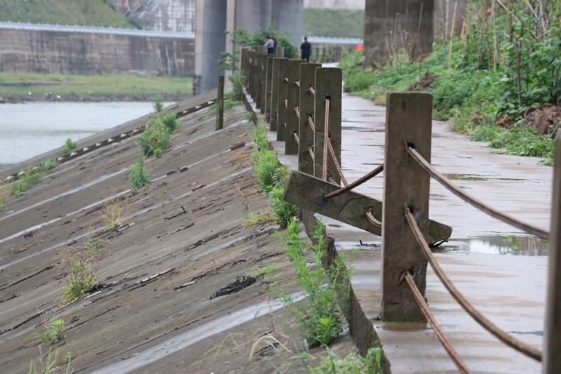 北外滨河路段河岸护栏损坏严重  过往行人心慌慌