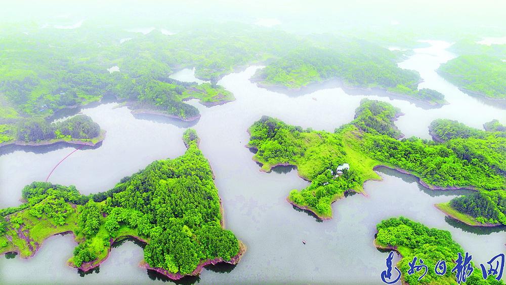 开江宝石桥水库库区拟培育万亩生态景观林