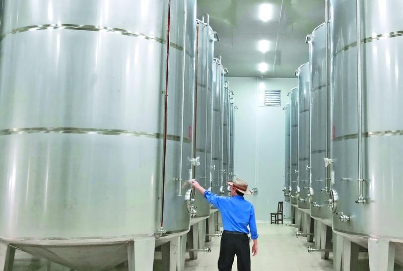 开江县大力发展油橄榄循环经济