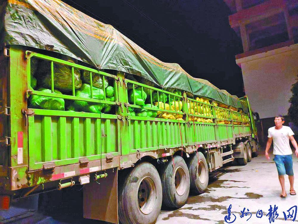 超强台风袭击舟山,万源连夜急送50吨新鲜蔬菜