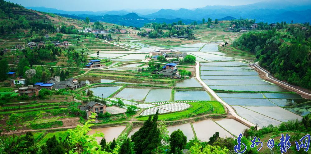 【中国农民丰收节】宣汉县农业农村经济高质量发展