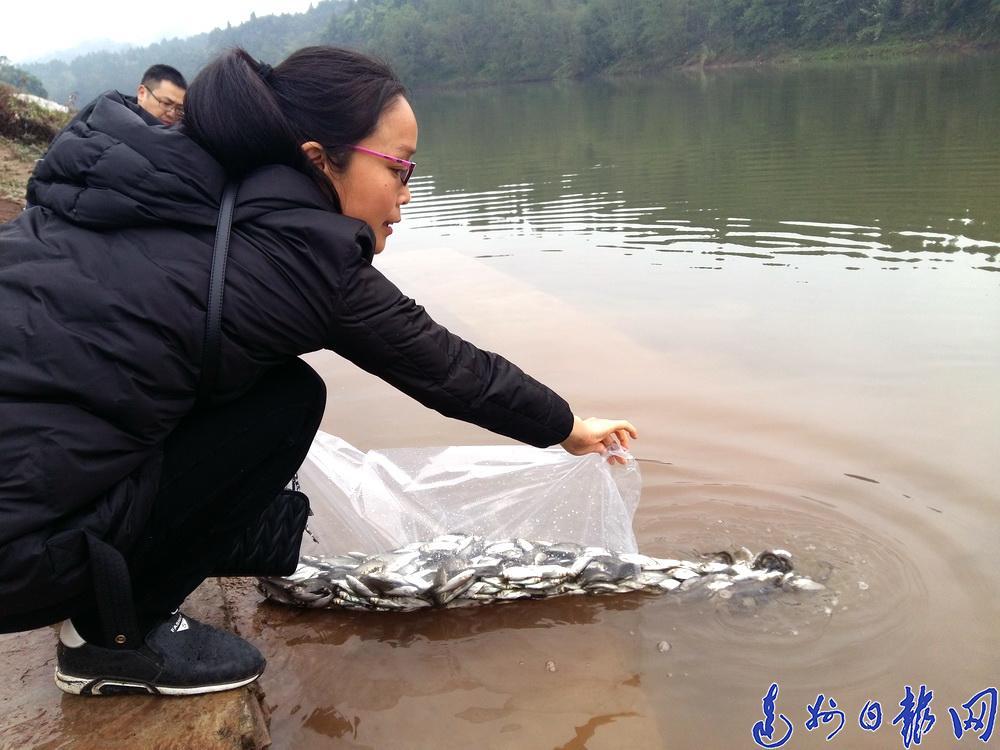 花鲢、白鲢、草鱼!138万尾鱼苗游入流江河