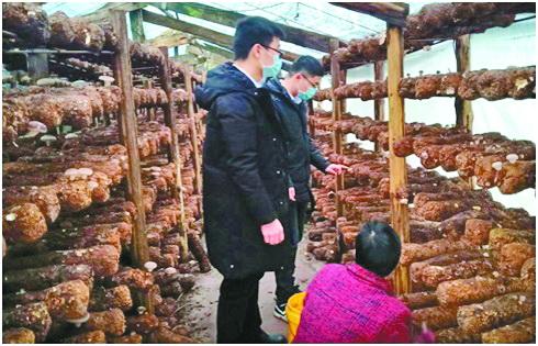 """万源市:一线监督 防疫保产""""两不误"""""""