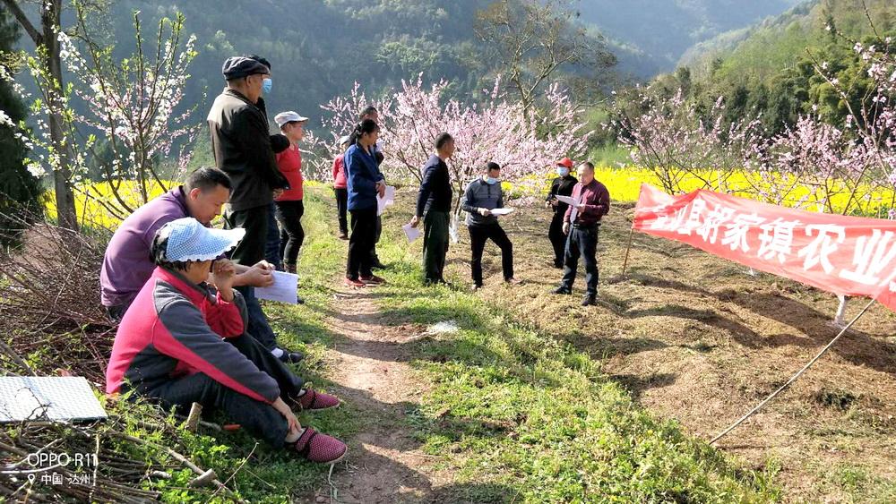 宣汉211名农技员为春耕保驾护航