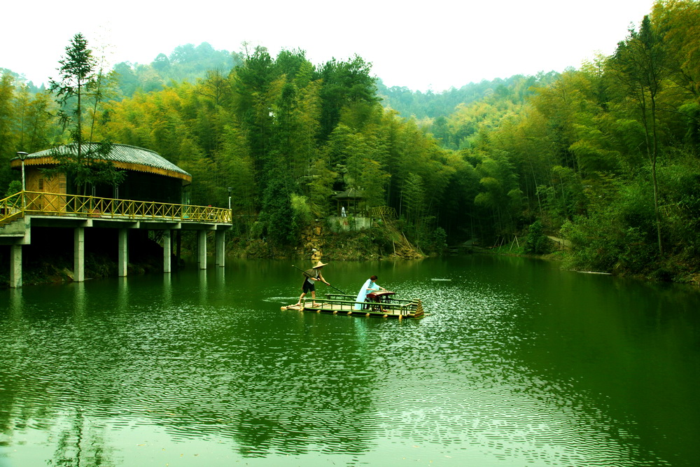 """宣汉县全力打造""""全国森林康养基地"""""""