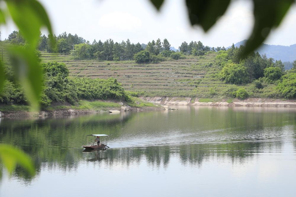 """开江县深入践行""""绿水青山就是金山银山"""""""