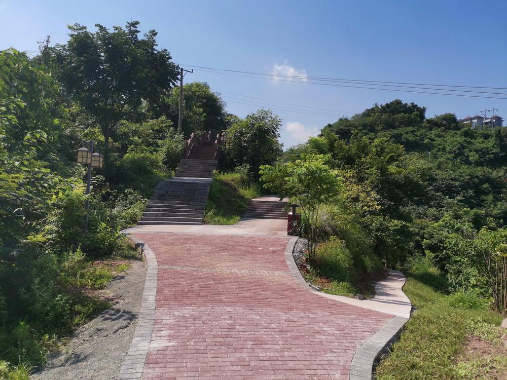 绿化带被踩成了路不宜再种灌木 市园林处给大寨子公园再添一条步行道