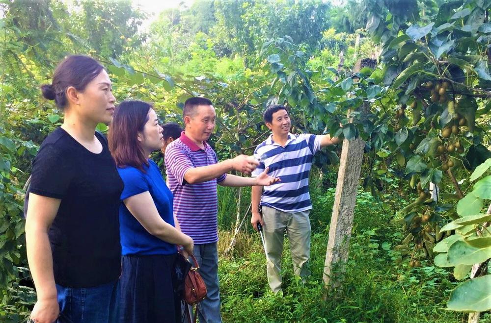 宣汉县政协组织部分政协委员等深入到返乡人员的创业基地调研