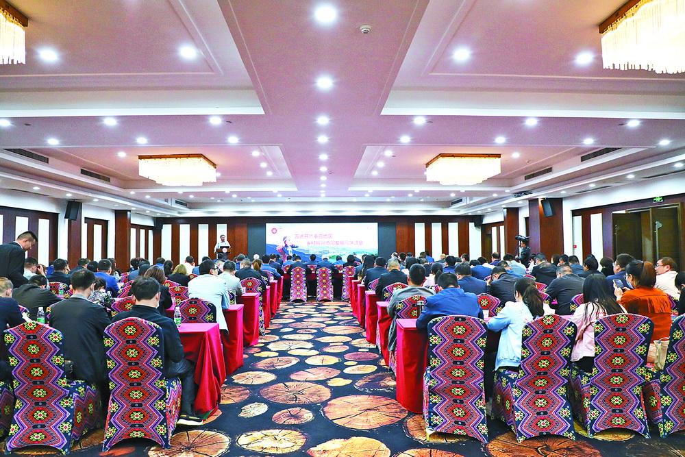 万达开暨秦巴地区乡村振兴协同发展高端峰会专家观点