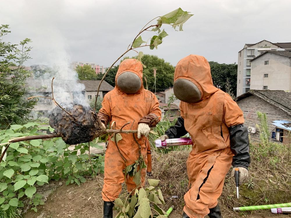 今年!大竹蓝天救援捅掉375个蜂窝