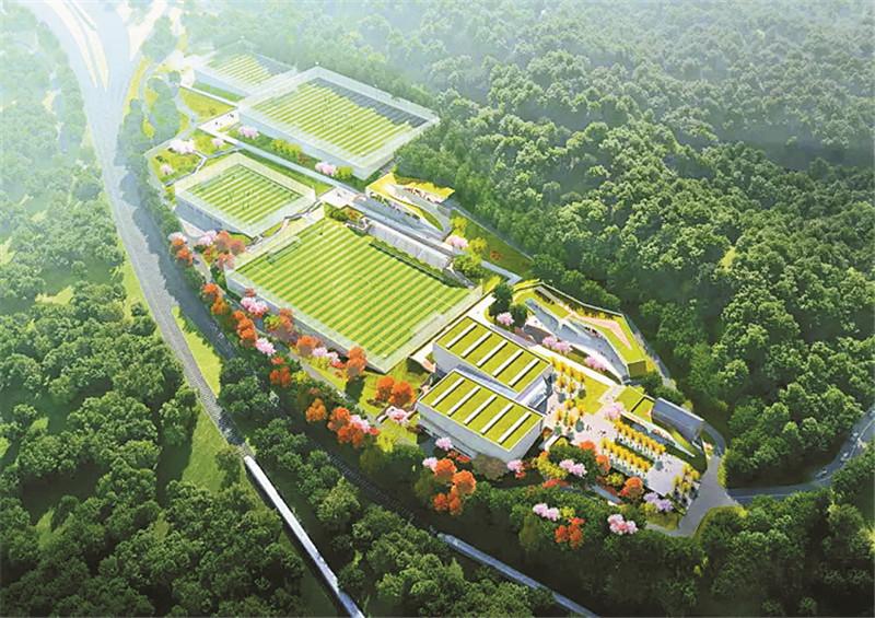 总用地8万平方米!达州拟新建足球训练基地