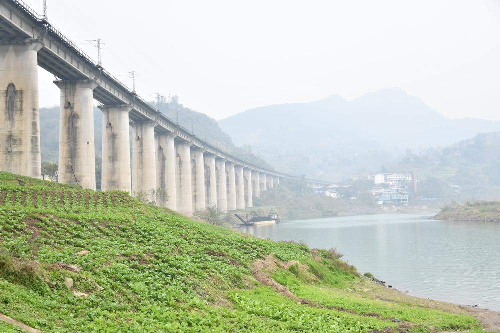大竹治理铁路沿线打造一道靓丽风景