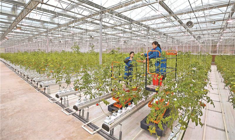 达州:休闲观光农业助农增收