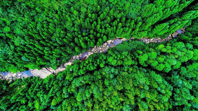 万源:文旅融合富民 生态宜居和美