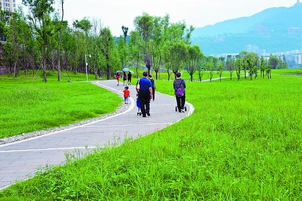 塔沱滨河湿地公园市民休闲健身好去处